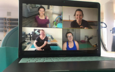Telehealth (or as I call it videoPHYSIO) works